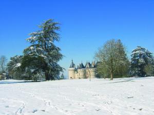 Chatau de Chaumont