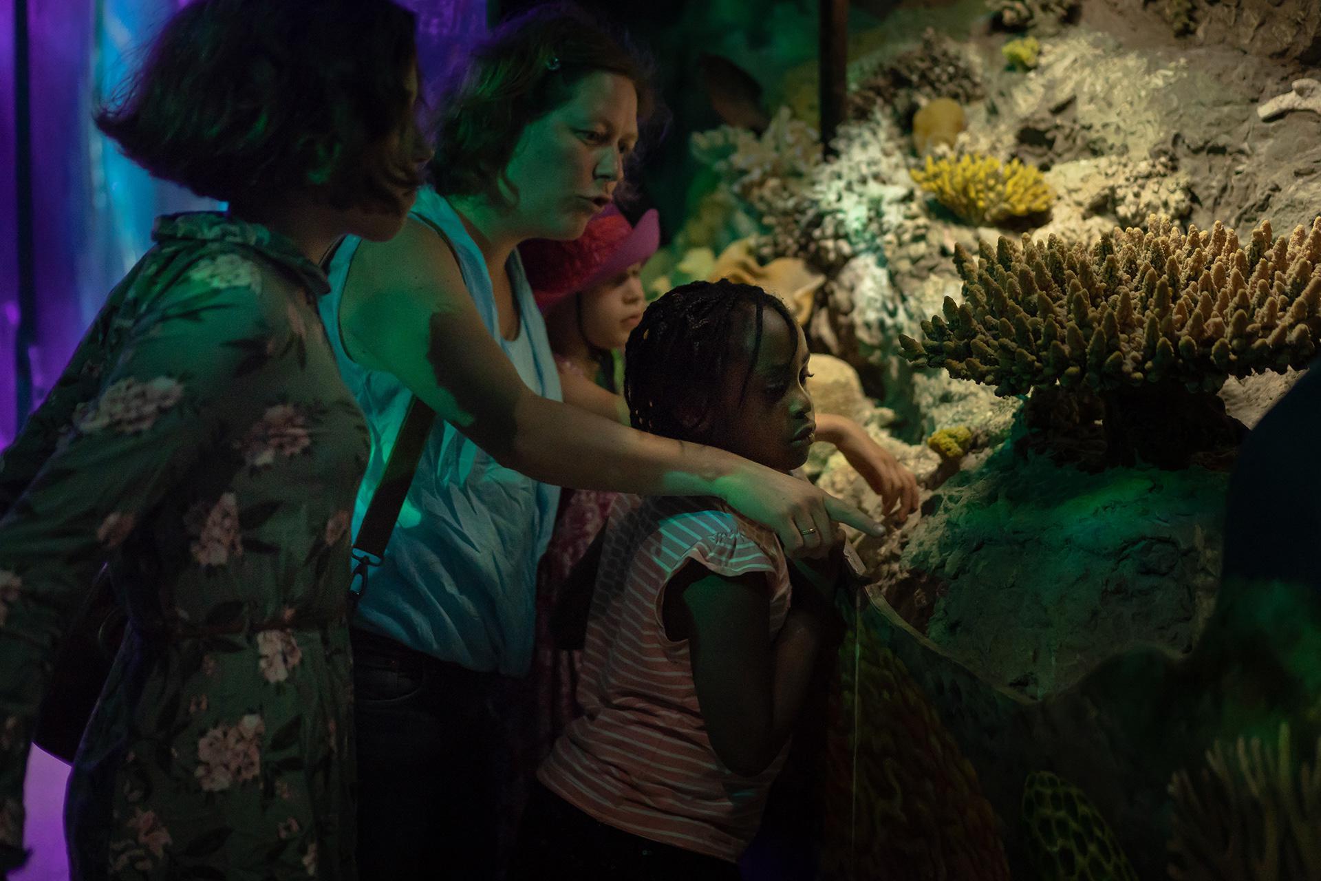 Ghift pourra raconter à sa mère et à ses frères et sœurs qu'elle a vu de beaux poissons au zoo de Rotterdam.
