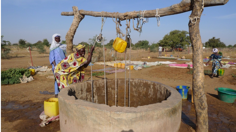 Les femmes du groupement Djaliba cultivent leur jardin à Krémis.